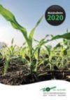 Maisbulletin 2020 en rassenlijst CSAR beschikbaar