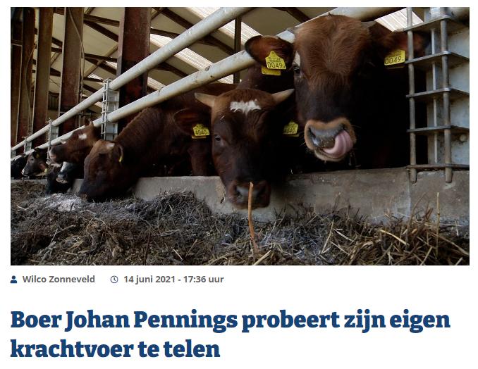 Innovatief project in Noord-Brabant: Boer Pennings probeert eigen krachtvoer te telen